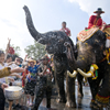 Festivals in Thailand throughout the year